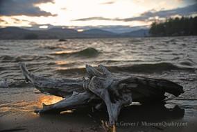 wilson driftwood