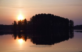 wilson sunrise 3