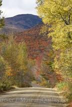 tumbldown road in fall
