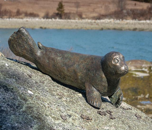 Salty Seal Pup - Side View