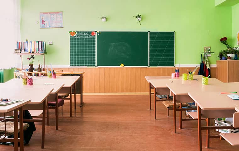 class room with chalkboard and desks with rodent problem in ripon california