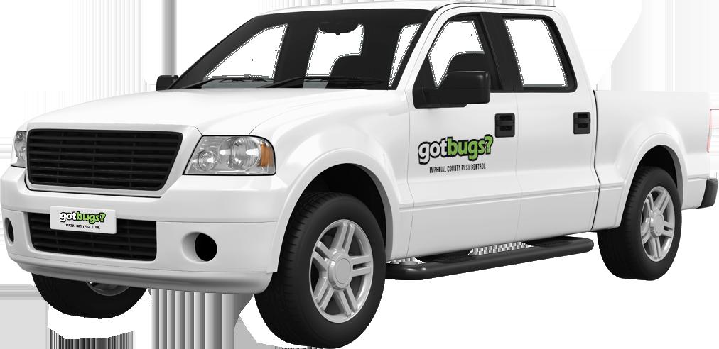 gotbugs company truck