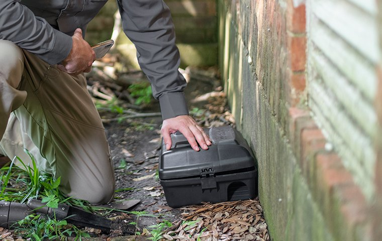 tech checking a rodent station outside a california home