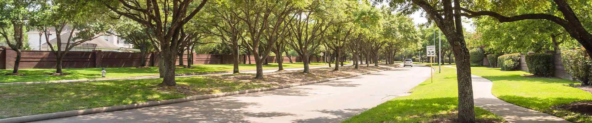 a view of a path in a park in arlington texas