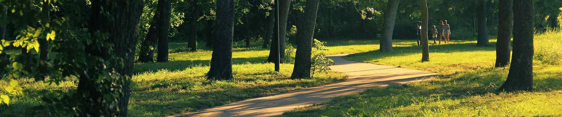 trees and a path in a park in colleyville texas