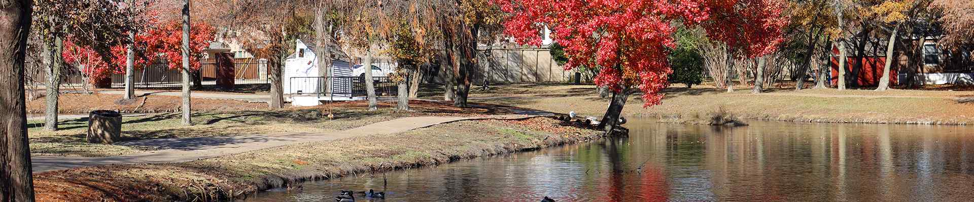 a pond and trees with fall foliage in parker texas