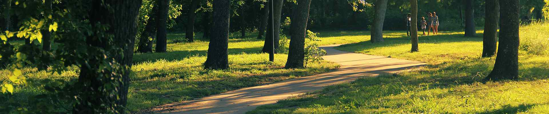 a path through the trees in university park texas