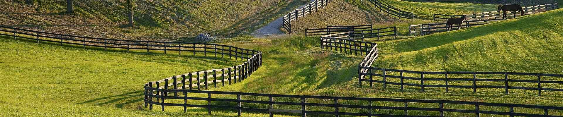 large fenced in pastures in van alstyne texas