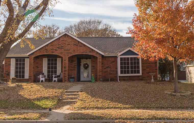 street view of a home and lawn in rowlett texas