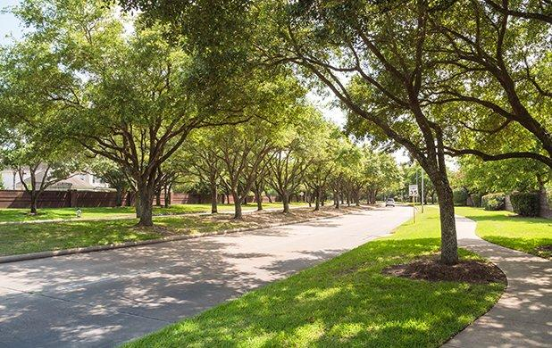 street view of a home and lawn in spring texas