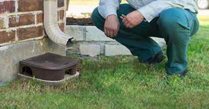 service tech inspecting for rodents