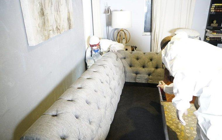 two pest control service technicians inspecting and treating a couch for bed bugs inside of a home in manhattan new york