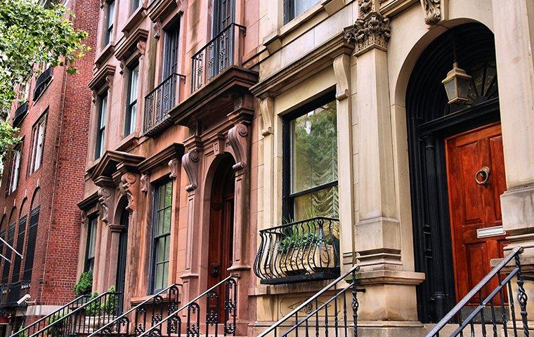the exterior of a row of properties in queens new york