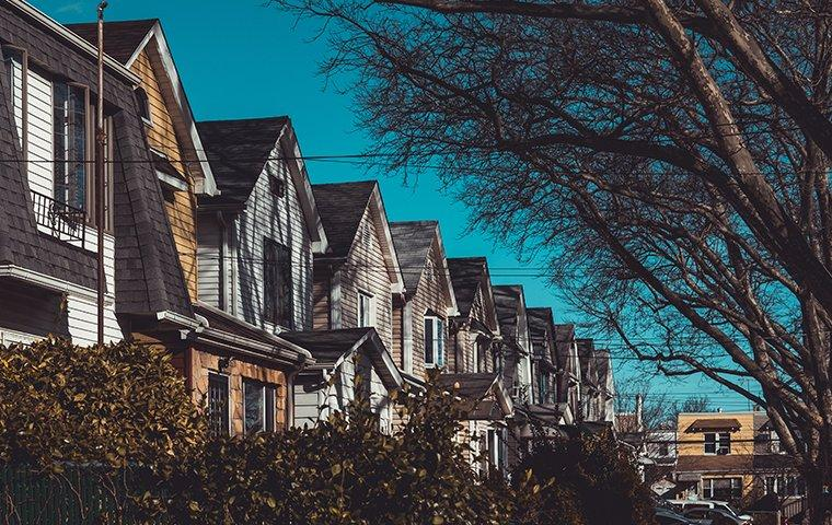 the exterior of a row of houses in queens new york