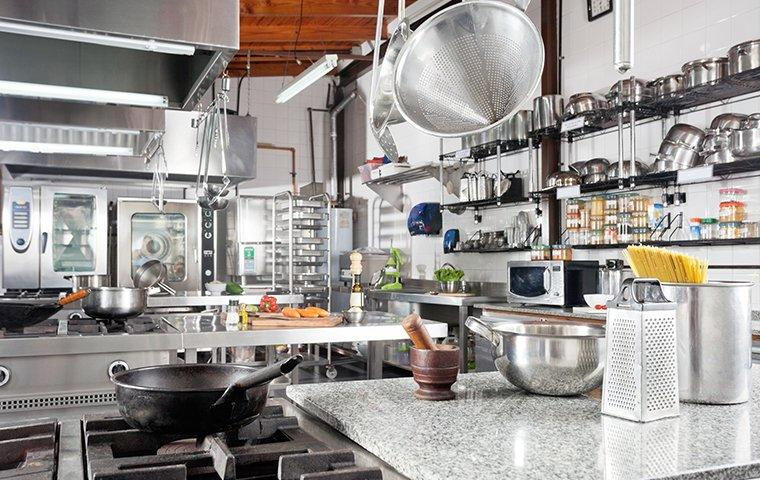 a commercial kitchen protected by cockroach control