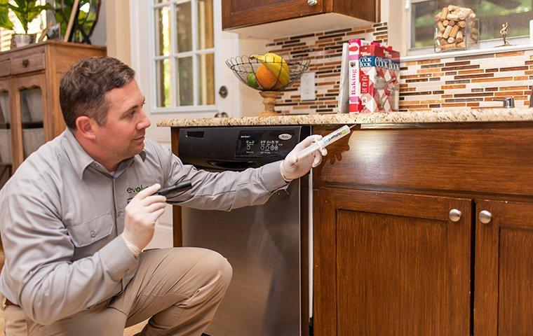 a pest technician inspecting a kitchen for pests in a home in fort forth texas