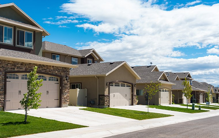 a homeowners association serviced by evolve pest control in st george utah