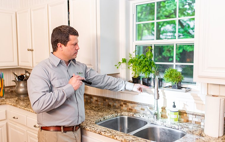 a pest technician inspecting a kitchen in a home in fort worth texas