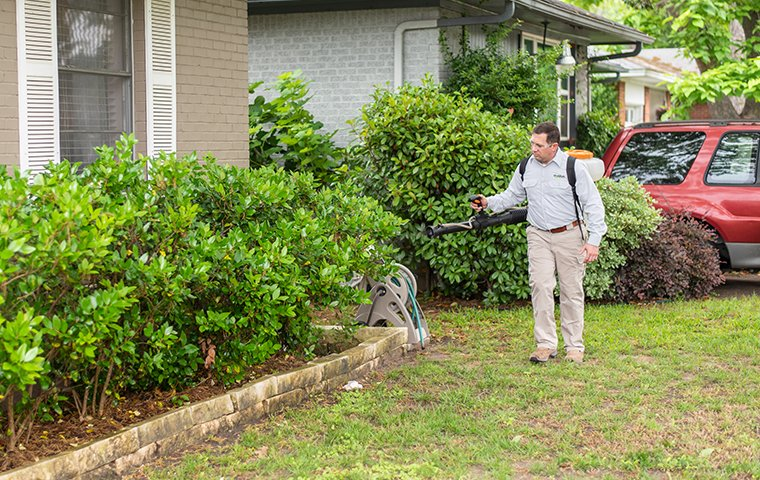 a pest control service technician performing mosquito misting services on the exterior of a home in fort worth texas