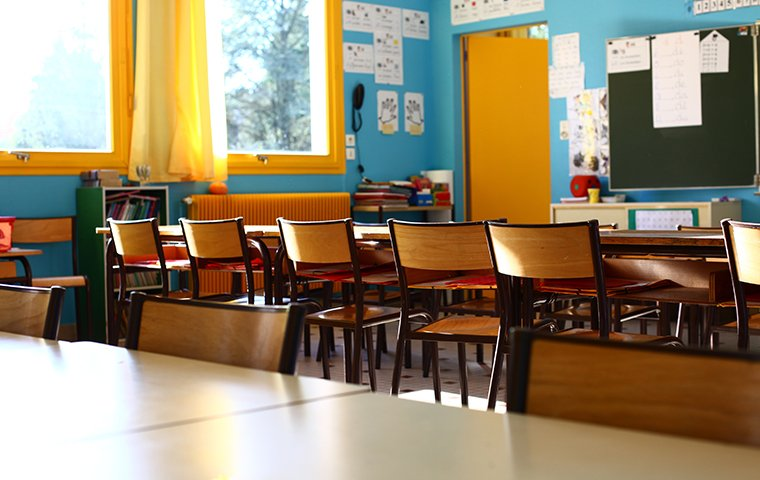 the interior of a classroom serviced by evolve pest control in fort worth texas