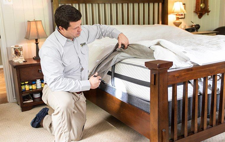a pest technician inspecting a bed for bed bugs in a home in memphis tennessee