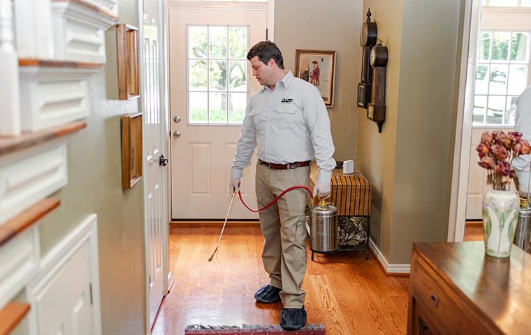 a pest techincian performing an interior treatment in a home in memphis tennessee